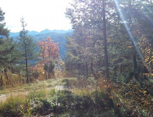 Parco Naturale Monte Corno